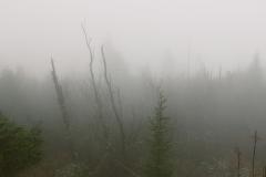 SmokyMountains_14