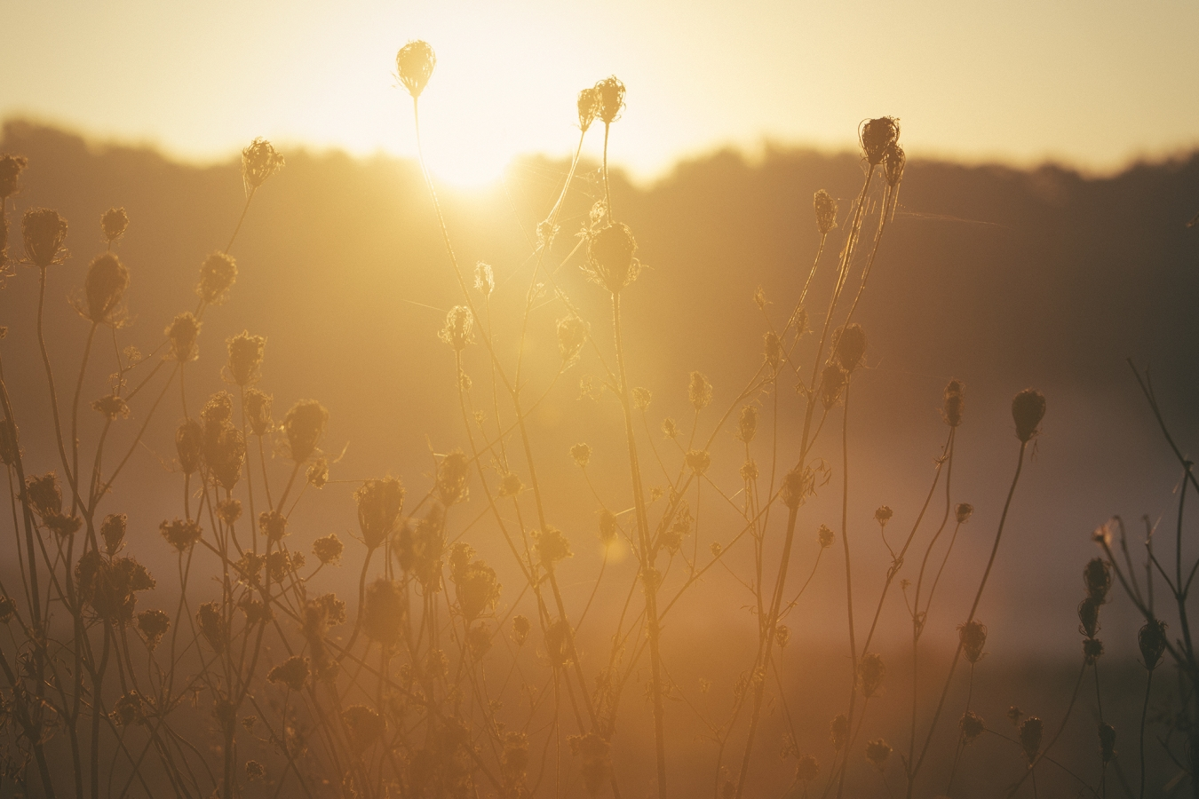 september-sunrise-1